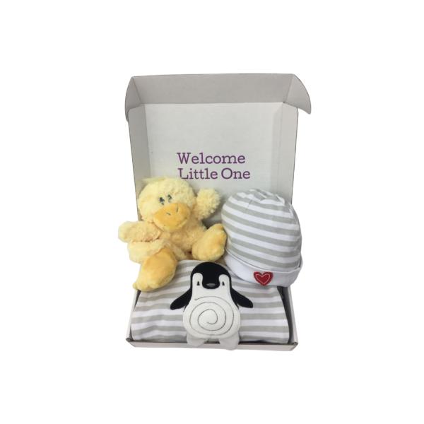 duck gift box