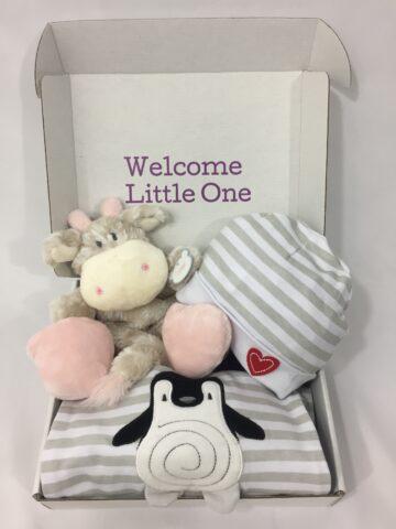 baby newborn gift box with giraffe rattle